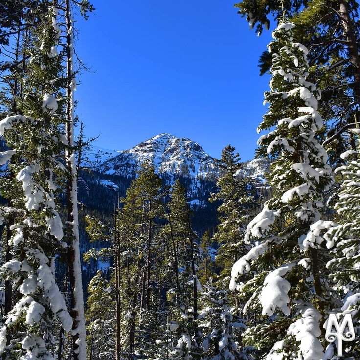 Snow for Christmas? You bet! Find out where Montanans play in the snow during Christmas break in southwest Montana. Photo: 'Winter In Hyalite Canyon, Bozeman, Montana'