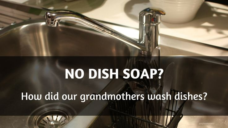 What About Dish Soap?   Just Plain Marie Homesteading and Simple Living
