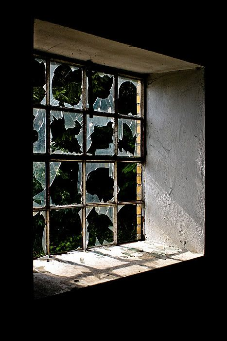 Contact paper becomes broken glass windows. This would look awesome on my front door @ Halloween!