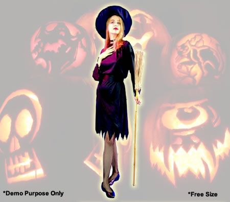 Witch Costume for your trick or treat.