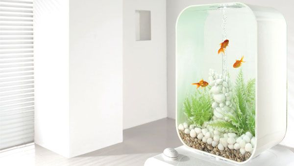 biorb life 60l white clean and elegant biorb fish. Black Bedroom Furniture Sets. Home Design Ideas