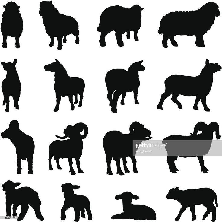 vektorgrafik  schaf silhouette kollektion  schafe