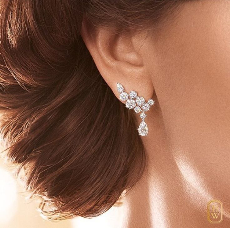 likeabCrush for diamonds earrings by Harry Winsto…