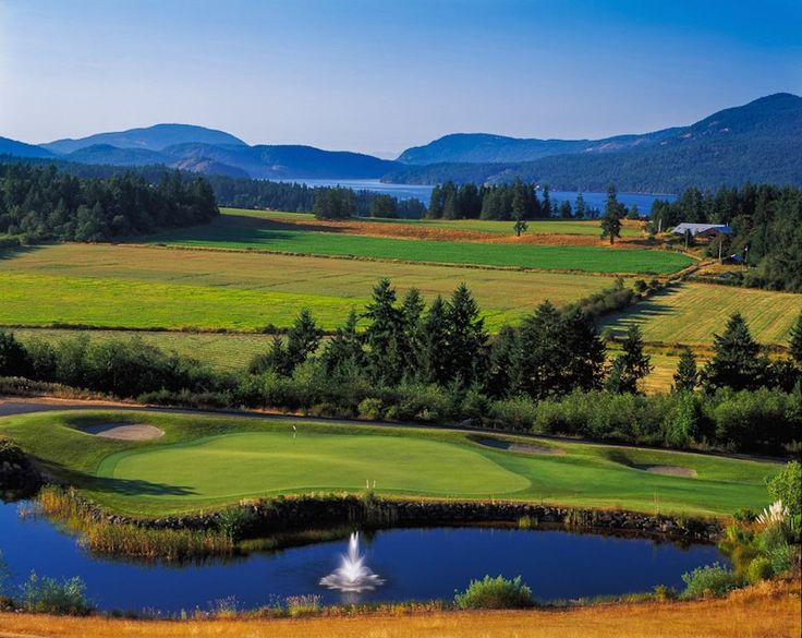 If you are looking for something fun to do on the Island this weekend- Why not visit the Cowichan Valley? There is something for everyone here.