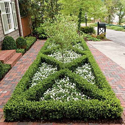 A tailored parterre of boxwoods and paths of antique bricks:  under Lauren's window box parterre filled with lavender and lambs' ears; replace tree with standing urn planted with dwarf butterfly bush or rose.