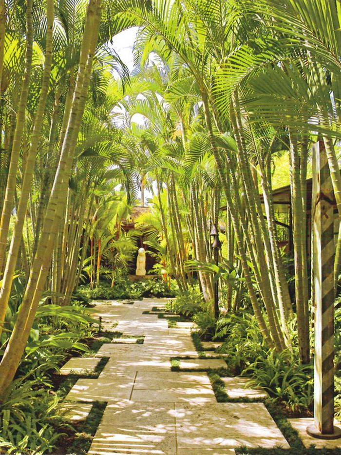 Tropical Eastern Garden Patio Walkway Tropical Garden Inspiration Caribbean Tropical Garden