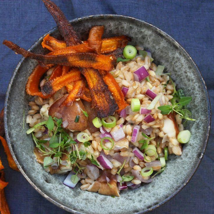 PERLEOTTO MED GULERODSCHIPS - Speltotto with carrot-crisps
