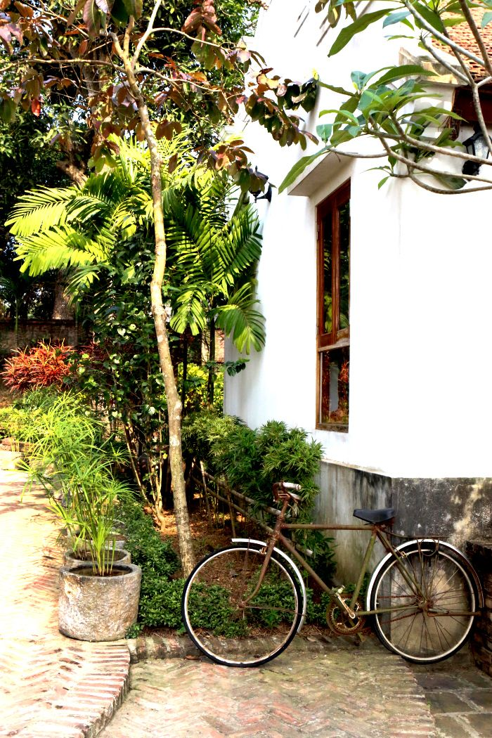 Enjoy a home stay experience and cycle your way around the countryside #cycling #HomestayVietnam