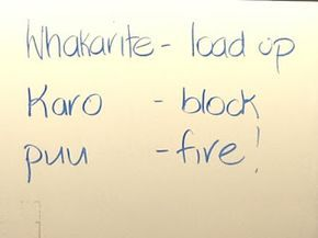 Springston Te Reo : Load, block and fire game.