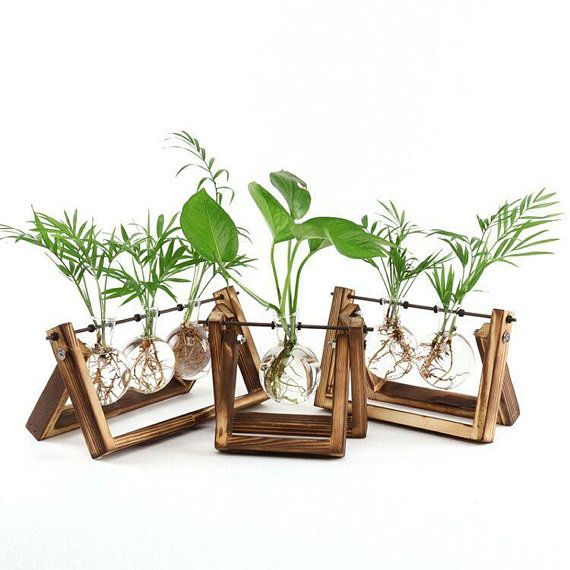 Glass Vase On A Wooden Plant Stand Glass Planter Glass Terrarium