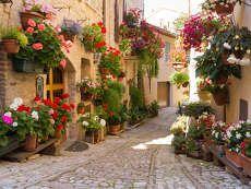 Montefalco, Olaszország
