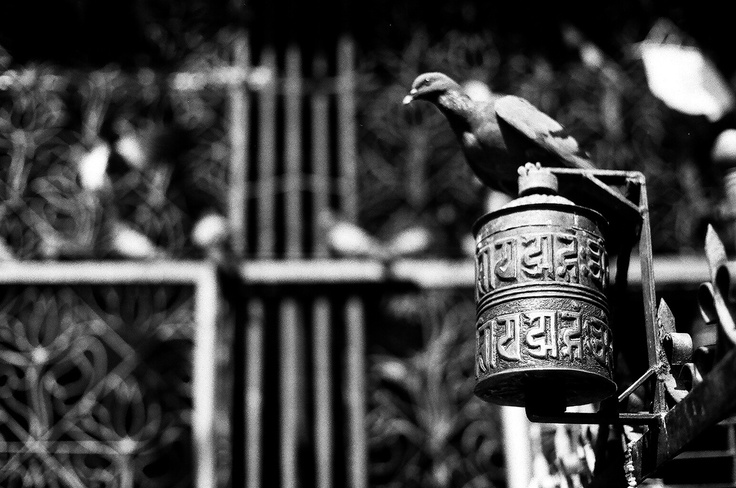 Praying Wheel, Kathmandu - Nepal .. Shot with Asahi Pentax 1976 on ILFORD PAN 100