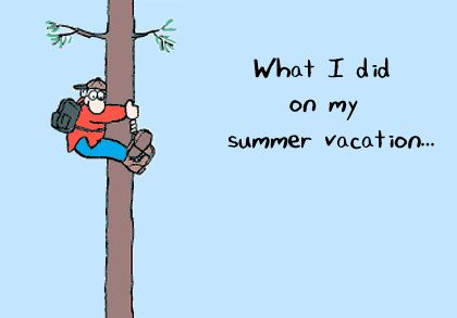 http://kingcards.com/resource/picture/VacationCards/tree_bear_32.gif