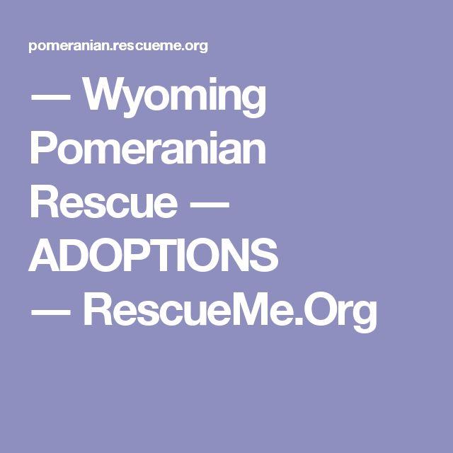 ― Wyoming Pomeranian Rescue ― ADOPTIONS ―RescueMe.Org