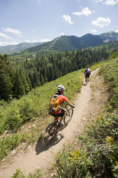 Top 5 Reasons to Bike Park City This Fall | Don't miss this special deal on our Fall Colors Tour