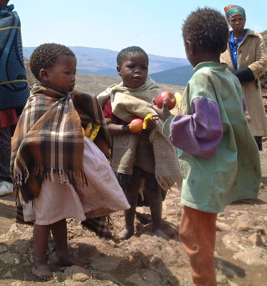 Lesotho| Africa: Nest