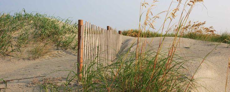 Things To Do in Sunset Beach NC - Sunset Beach NC Hotel | The Sunset Inn