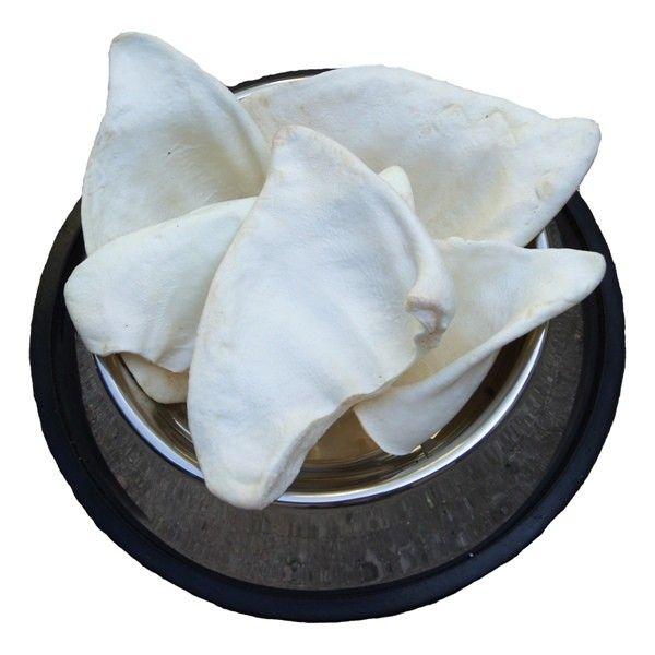 Ucho Wieprzowe średnie - Białe 1szt