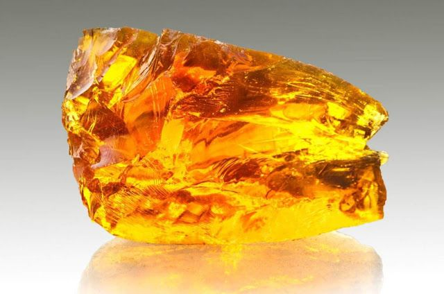 In a project that could be straight out of Jurassic Park, Monash University researchers and collaborators from the Deakin Institute of Frontier Materials (IFM) used nuclear magnetic resonance to investigate the make-up of 52 to 40-million-year-old amber samples recovered from sites in Anglesea, Victoria, and Strahan, Tasmania.