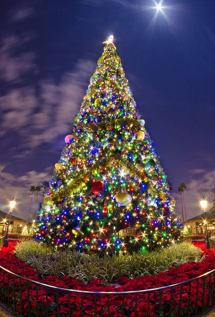 Epcot's Christmas Tree at Walt Disney World | #disneychristmas #disneyxmas #disney #christmas #holiday #xmas: