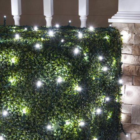Christmas Get It Now Wintergreen Lighting 100 Lamps LED Christmas