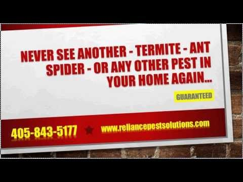 You Will Never See Another Termite, Ant, Spider, Or Any Other Pest In Your Home Again...GUARANTEED! >> pest control oklahoma city --> http://youtu.be/rCmaLKY9F4s