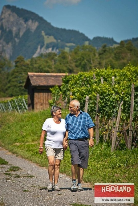 Hiking trough the vineyards of the Bündner Herrschaft.
