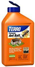 How to get rid of ants effectively using borax as an ant killer. Using BORAX TO KILL ANTS is cheap and it works amazingly well. Eliminate the entire colony!