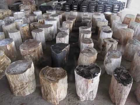 1000 Images About New Uses For Tree Stumps On Pinterest