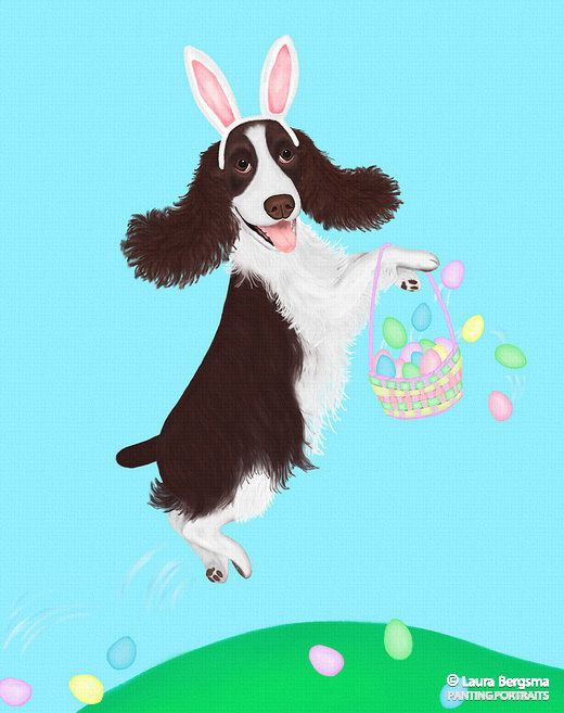 Yay, Spring is coming! Pipi the Springer Spaniel ushers in the season.