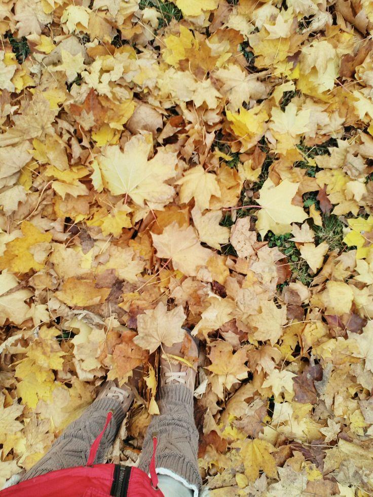Walking on leaf carpet