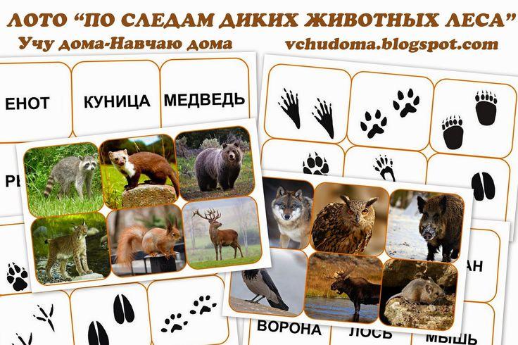 лото по следам диких животных леса free download, bingo with animal footprints