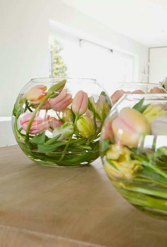 Tulpen. Eerst warm laten worden zodat ze wat slapper worden. Dan in de vaas goed buigen en even in een koude ruimte zetten.