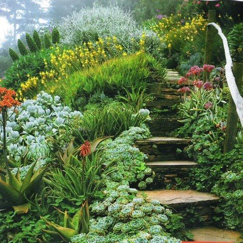 Garden Design On A Hill