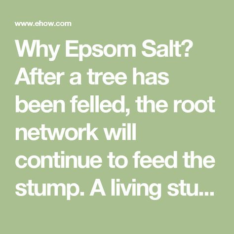 Why Epsom Salt? After a tree has been felled, the root network will continue to feed the stump. A living stump will not rot and may grow new shoots. Epsom salt (or magnesium sulfate) is hygroscopic, which means the crystals absorb water. In sufficient quantity, Epsom salt pulls moisture from the wood, which then kills the tree. There are many substances that could be applied to a tree stump to kill it, but Epsom salt has advantages over other stump removal chemicals. Rock salt or caustic lye…