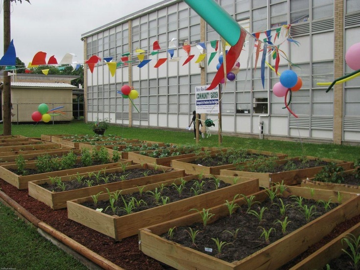 17 Images About Community Garden Ideas On Pinterest Gardens Purpose And School Community