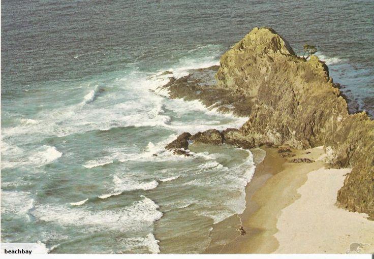 The Spirits Tree Cape Reinga - Goodall | Trade Me