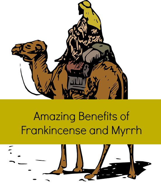 Frankincense and myrrh essential oil benefits, and how these ancient aromatics are becoming popular again.