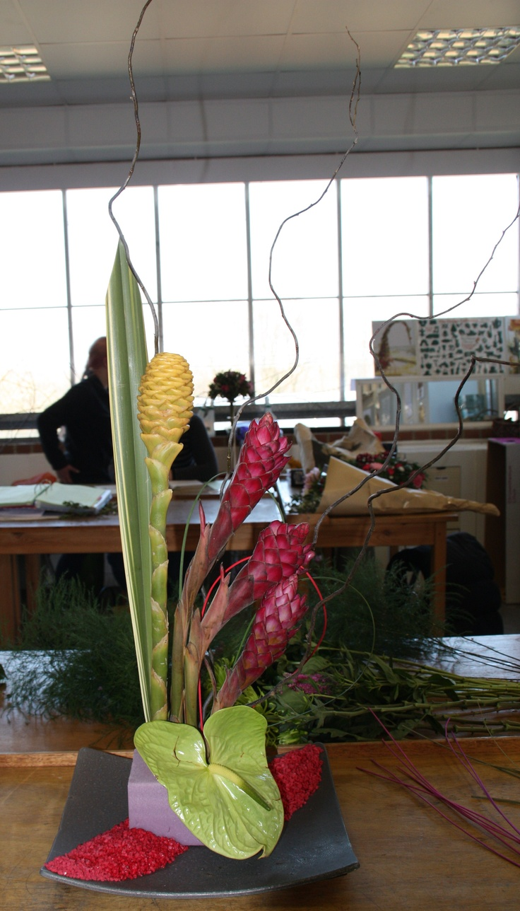 My form linear - ginger lilies, anthurium, twisted willow, midelino,