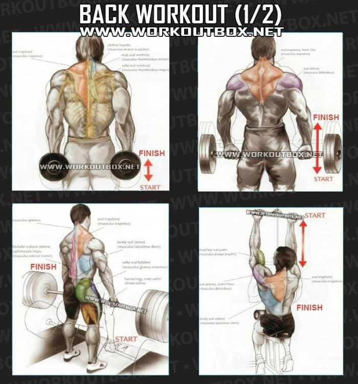 Back routine