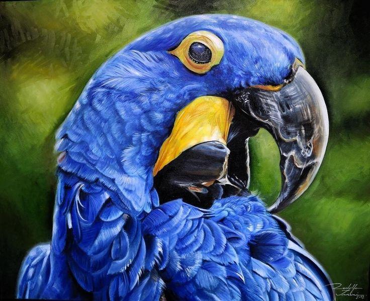 """Feito por @rodolfoturini  Obra: """"MARAVILHA EM EXTINÇÃO"""" """"Quando penso em pintar uma obra o primeiro passo que dou é ir atras de uma boa referência. No caso dessa uma arara azul um pássaro em extinção que até mesmo para encontrar uma boa fotografia está difícil por elas estarem desaparecendo. Muito triste!  Largue o celular de lado por 10 minutos do seu dia e repare na infinita beleza da natureza ela está a toda nossa volta não deixe-a morrer.  Preserve a natureza!"""" @rodolfoturini…"""