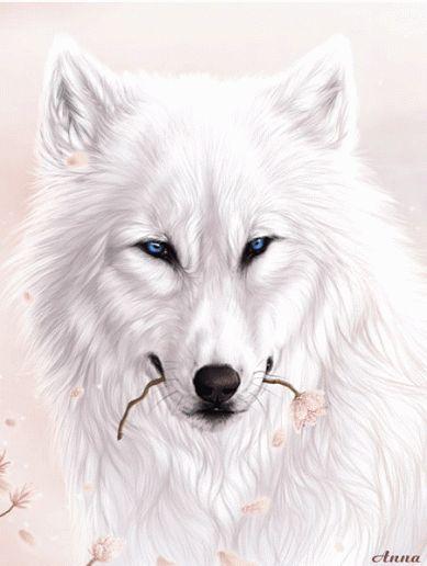 Wolf GIF...By Artist Unknown...