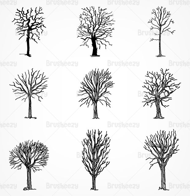 Drawn-dead-trees-brusheezy