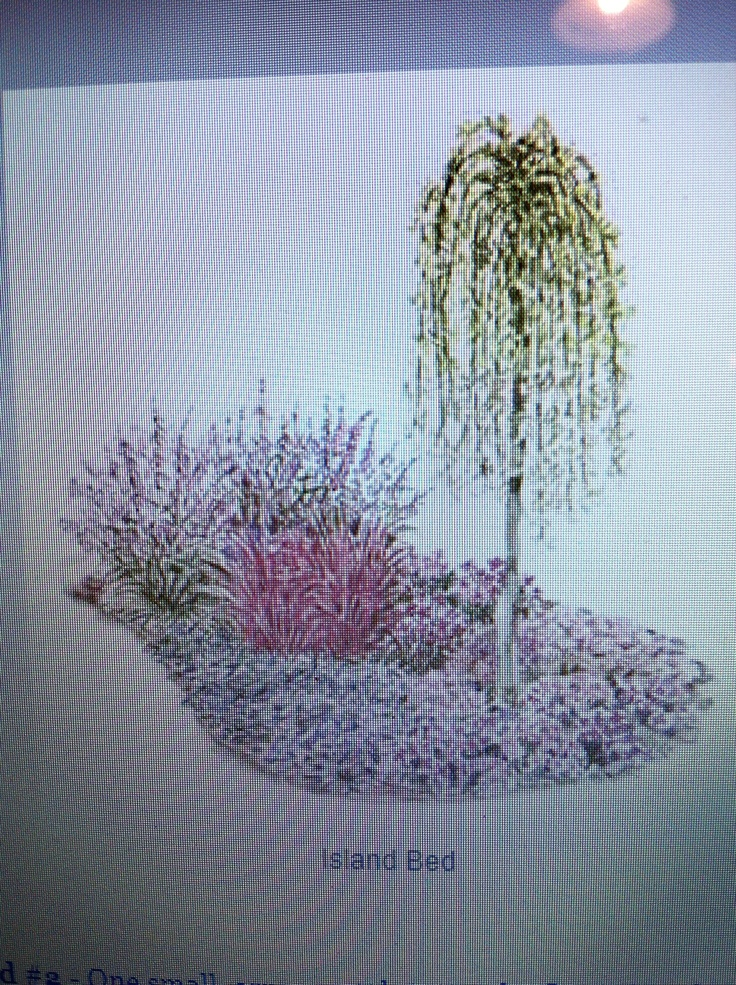 139 best images about gardening landscaping on pinterest for Flower bed shapes designs