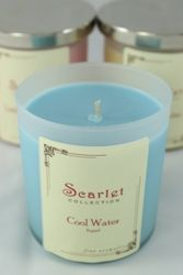 (✅BOUGHT) Davidoff Cool Water (type) Soy Candle ($27.50)