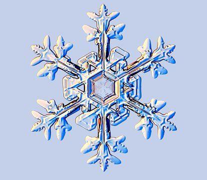 17 meilleures id es propos de tatouages de flocon de neige sur pinterest tatouage de neige - Vrai flocon de neige ...
