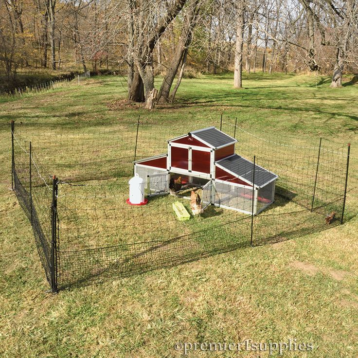 Low introductory cost! Shock-Or-Not Poultry Fence - A multi-purpose electric poultry net fence with a non-electrifiable chick-tight mesh along the bottom.
