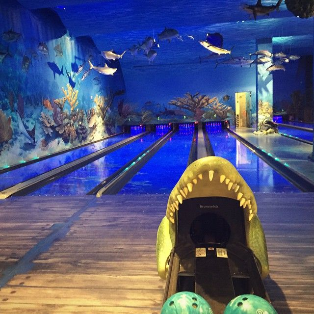 15 best images about memphis tn on pinterest peabody for Fishing in memphis