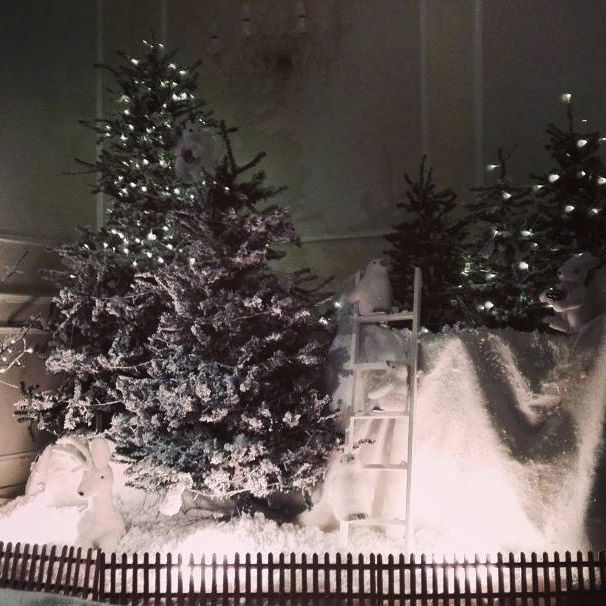 """Christmas isn't a season. It's a feeling."" (Edna Ferber) An enchanted wood at #BaglioniHotelLuna. #BaglioniHotels #Christmas #Christmas2015 #feeling #EdnaFerber #Christmastrees #snow #lights #enchantment #wood #decoration #Venice"