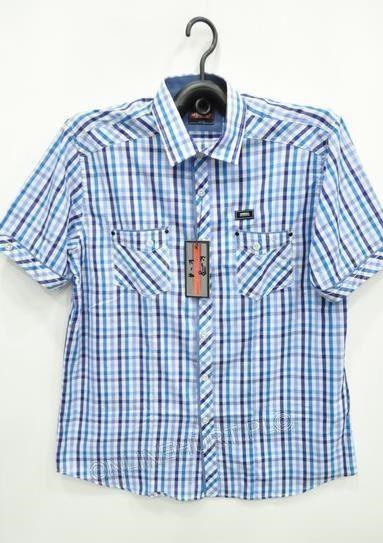 Koszula Męska Modely K-8 K-A Kr. Rękaw  (M-3XL)